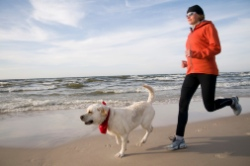 Pet Friendly Activities in North Myrtle Beach