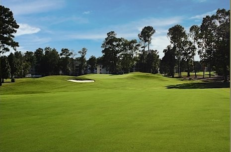 California Oaks Property Management on River Oaks   Fox To Otter Golf Course   Myrtle Beach Golf Packages